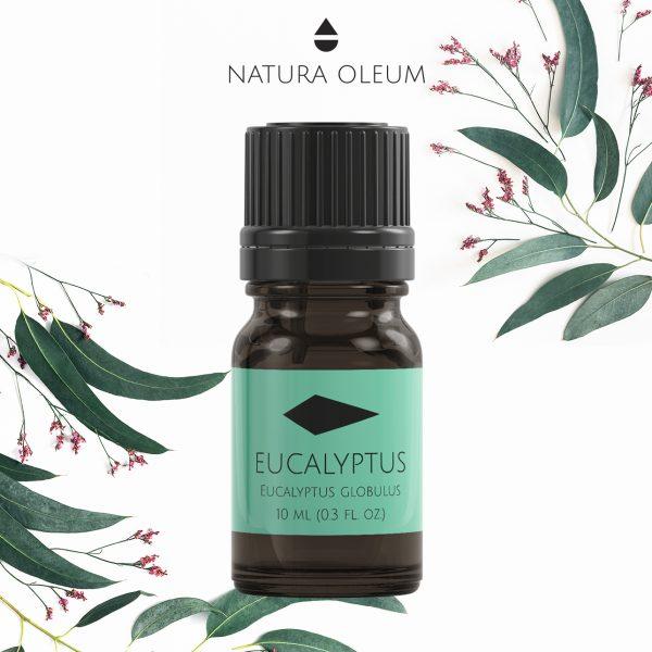 Eucalyptus-Essential-Oil-Natura-Oleum
