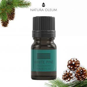 White-Pine-essential-oil-Natura-Oleum